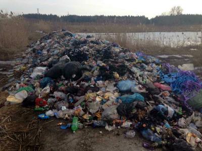 ВКременчуге экоактивисты отыскали львовский сор врайоне водоочистных сооружений