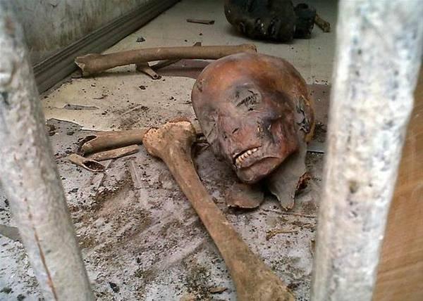 Мумифицированные тела людей отыскали вшалаше наПолтавщине