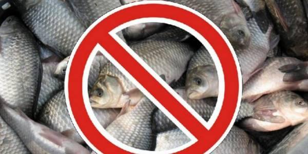 запрет ловли рыбы ярославская обл