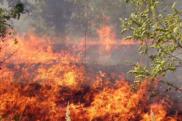 Рух транспорту між Кременчуком і Горішніми Плавнями перекрито через пожежу і задимленість