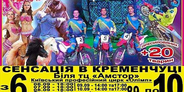 «Кременчугская газета» готова делать подарки любителям цирка