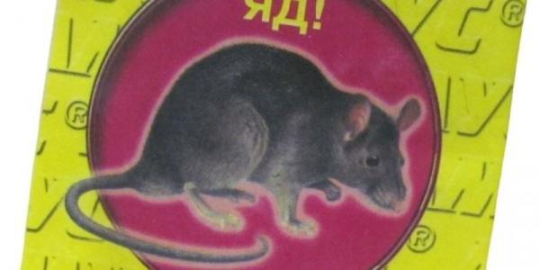 Годовалая девочка отравилась крысиным ядом