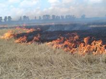 В центре Кременчуга горела трава – чуть не сгорел дом
