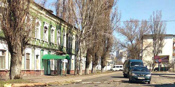 В Кременчуге порывистый ветер «уложил» дерево на проезжую часть