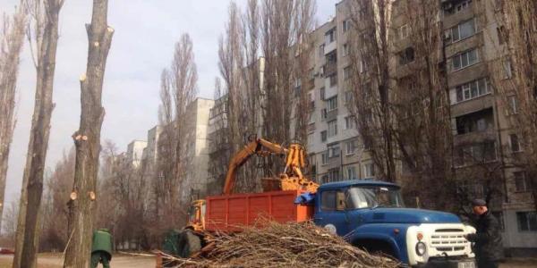Стрижку деревьев в Кременчуге закончат до сокодвижения