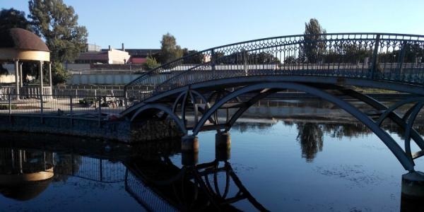 В Городском саду в Кременчуге пройдет исторический квест