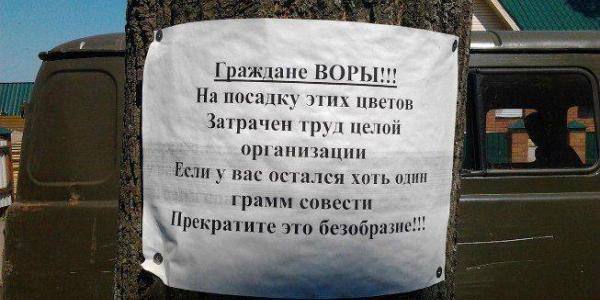 У Руслана Крамаренко житель Кременчугского района украл 120 саженцев