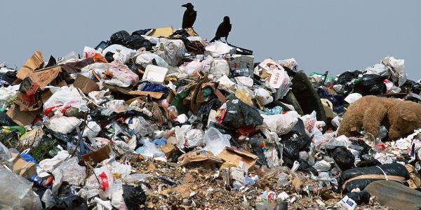 На сессии приняли решение об обращении к львовским властям по поводу загрязнения тамошним мусором территории Кременчугского района