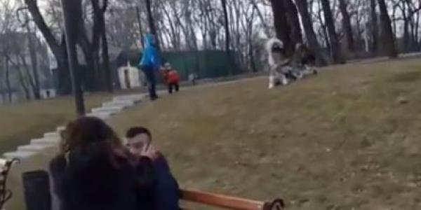 Кременчужан учат выгуливать собак с помощью You Tube