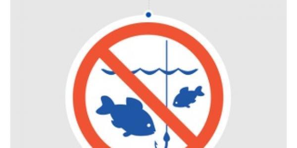 З 1 квітнярибпатруль оголосив про початок нересту та весняно-літню заборону на лов риби