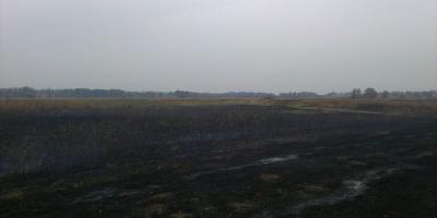 На Полтавщине горит более четырех гектаров торфа