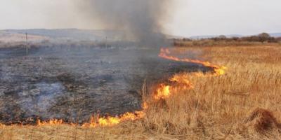 Под Кременчугом горели пять гектаров травы и две тонны сена