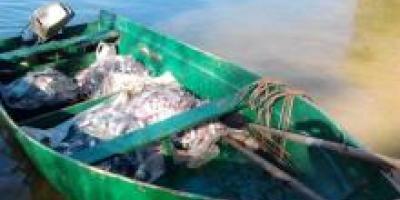 В Кременчугском водохранилище браконьеры вылови 200 кг рыбы