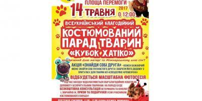 Со всей Украины в Кременчуг свезут собак и котов