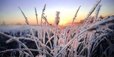 Кременчуку обіцяють високу пожежну небезпеку та заморозки