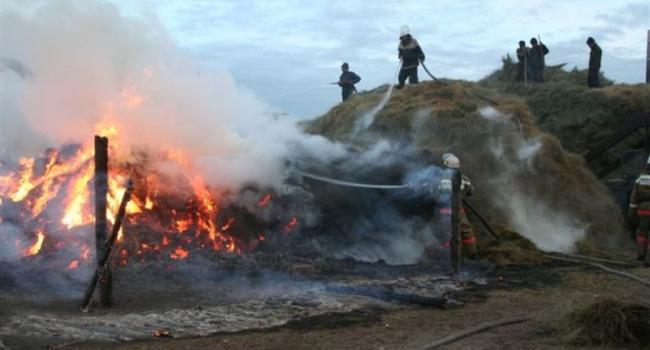 Из-за детской шалости с огнем сгорело сено на 45 тыс. грн.