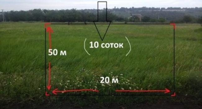 Экс-депутат Стасюк может стать владельцем 100 кв. м земли
