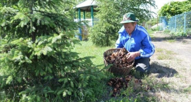 СЭС считает жертвы среди любителей «тихой охоты»