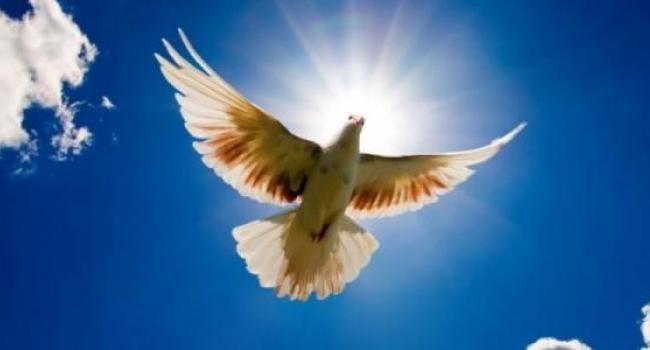 В Кременчуге началась «Неделя Мира»