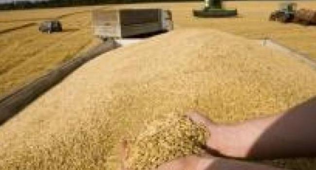 На Полтавщине намолотили более 2 миллионов тонн зерна