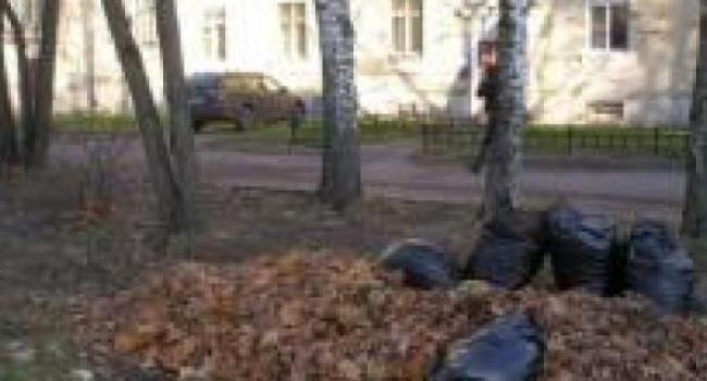 Ярош просит «Добробыт» срочно убрать мусор с центральных улиц