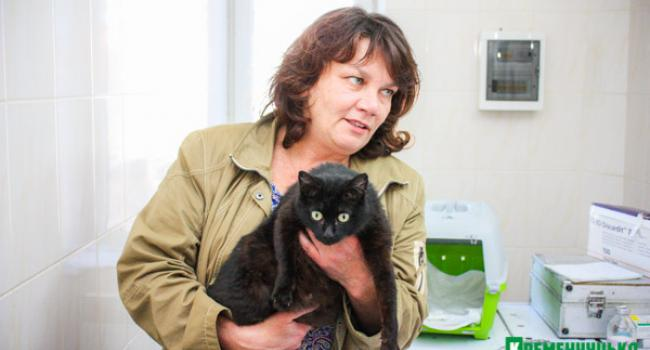 В КП «Спецсервис-Кременчуг» взялись за бездомных кошек