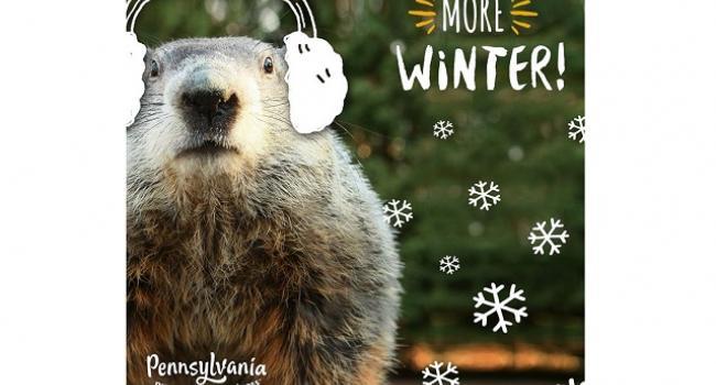 День сурка: харьковский Тимка предсказал долгую зиму и скорый безвиз