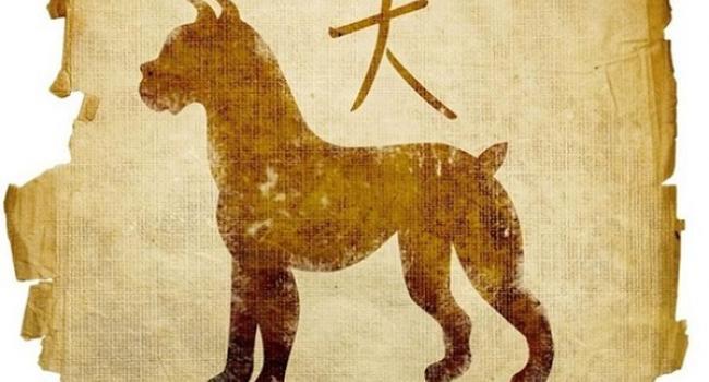 Восточный гороскоп на 2018 год: год работы над имиджем