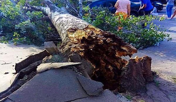 Хроники порывов ветра в Кременчуге: кременчужане постят «апокалиптические» фото-видео