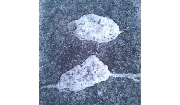 Ямы на кременчугских тротуарах «латает» снег