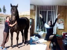 «Сэлфи: Я и моё рабочее место»: лошадь и офис