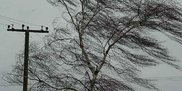В Кременчуге ждут сильный ветер