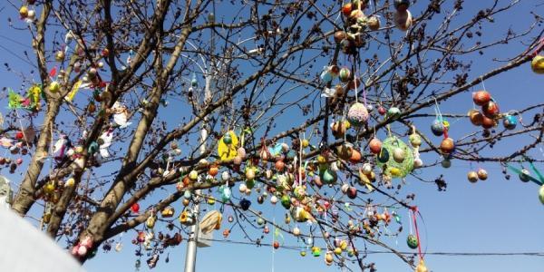 В Кременчуге «расцветет» Пасхальное дерево