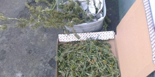 У кременчужанина при обыске изъяли больше килограмма наркосырья