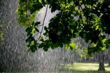 Кременчуг на выходные: дожди – местами солнце