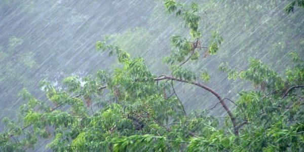 На Полтавщине сегодня обещают шторм – Кременчуг пока «в стороне»