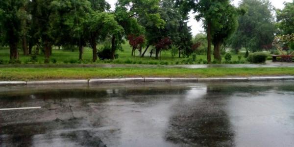В Кременчуге «в самый жуткий час косят трын-траву»
