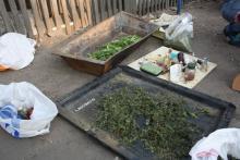 В Комсомольске задержали группу наркоторговцев