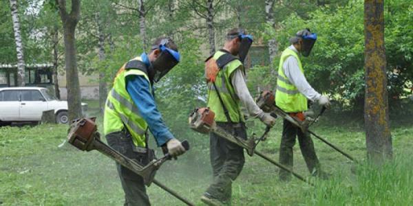 Кременчугская полиция заблокировала работу газонокосильщиков в парке Юбилейный