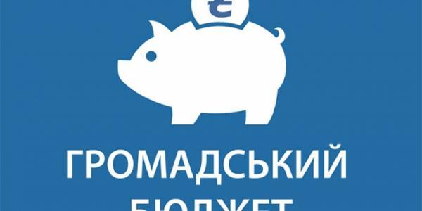 Внедрение общественного бюджета в Кременчуге будет трудным