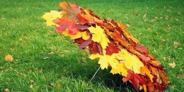 Предстоящие осень и зима будут теплыми