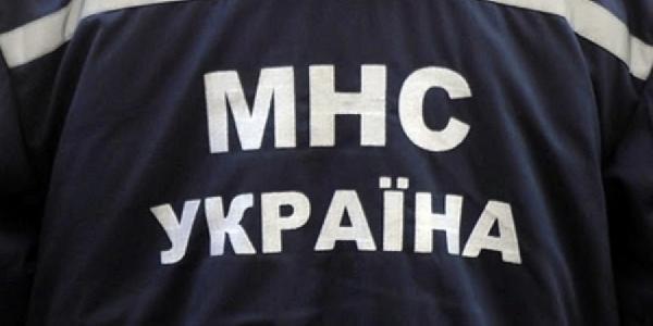 По Гагарина жильцы «потеряли» соседей, а нашли погибшего голубя