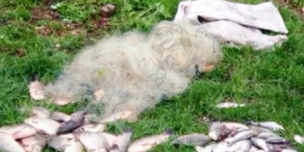 Под Кременчугом задержан 60-летний браконьер