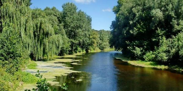 В реке Сула возбудителей холеры и паразитов не обнаружено