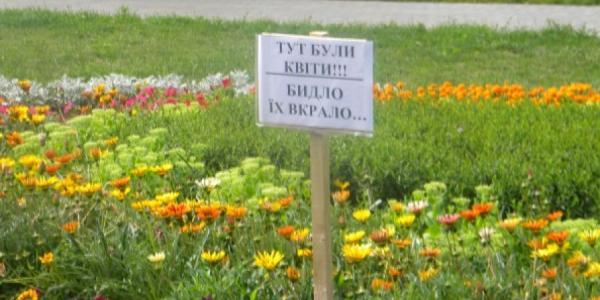 В Кременчуге злоумышленники «набрали» саженцев и украли газонокосилки
