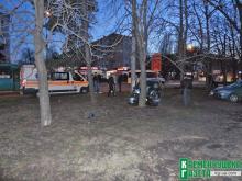 На Халаменюка в результате ДТП Mitsubishi влетела в дерево, а Volkswagen от удара развернуло на дороге