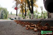 В Кременчуг «осень ворвалась без тени смущения»
