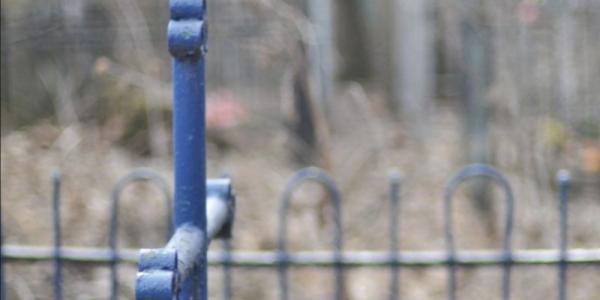 В Кременчуге вандалы открыли сезон «охоты»