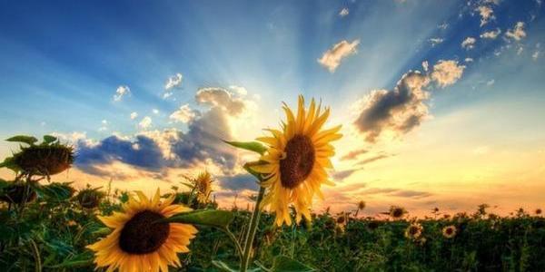 Небо Кременчуга прояснится лишь в воскресенье