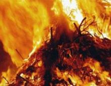 В Кременчуге сгорело 500 кг сена